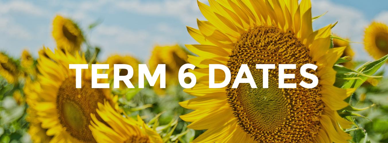 Term 6 Dates image